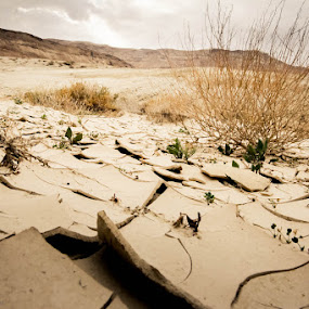 by Libin Michael - Landscapes Deserts