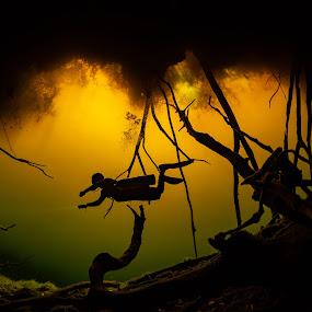 CarWash by Hezi Shohat - Landscapes Underwater ( nikon, nauticam, mexico, wide, cenote, scuba, underwater, dive )