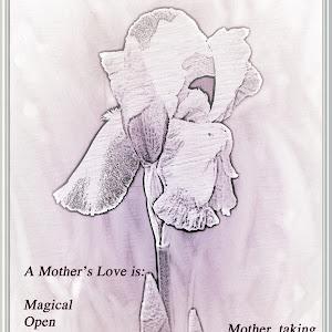 fx 3 Card Mother Iris white _170420_0004.jpg