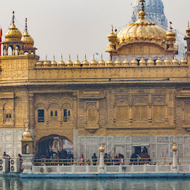 Golden Temple by Janet Marsh - Buildings & Architecture Places of Worship ( golden temple, india,  )