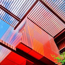 dgs by Glen John Terry  - Buildings & Architecture Architectural Detail ( diagonals, city )