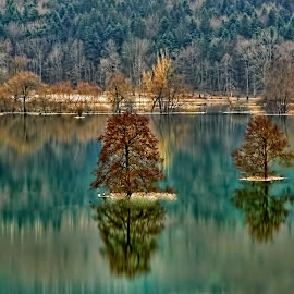 The Autumn Flood by Janez Podnar - Landscapes Waterscapes (  )