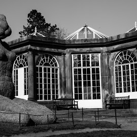 Rabbit & The Greenhouse by Jim Edginton - Buildings & Architecture Other Exteriors ( sculpture, black and white, yorkshire, art, house )