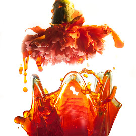A Splash of Color by Sandra Hilton Wagner - Abstract Water Drops & Splashes ( water, orange, vase, splash, waterdrops, flower )