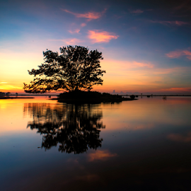 .:: t w i n s ::. by Setyawan B. Prasodjo - Landscapes Sunsets & Sunrises ( reflection, dawn, tree, twilight, sunrise )