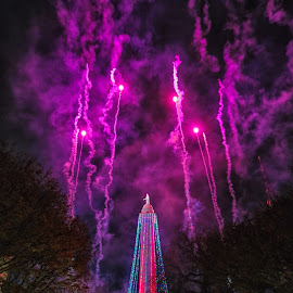Monument Lighting by Carol Ward - Public Holidays Christmas ( baltimore tradition, holiday lights, mount vernon place, christmas lights, christmas, baltimore, fireworks, holidays, monument lighting, night, george washington monument, mount vernon )