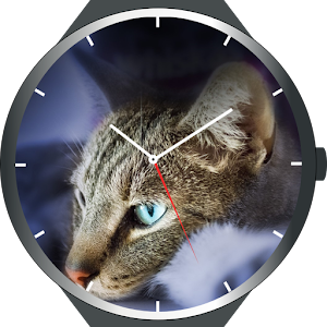 Download Cats Watch Faces For PC Windows and Mac