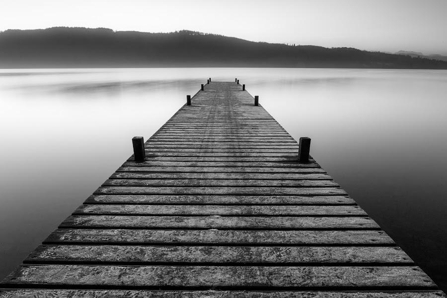 Jetty by Rick McEvoy - Black & White Landscapes ( black and white, lake windermere, rick mcevoy, jetty, landscape )