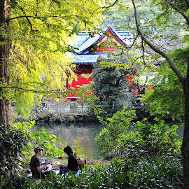 Japan Leisure by Leka Huie - Nature Up Close Trees & Bushes