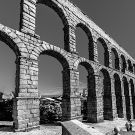 acueducto de Segovia by Roberto Gonzalo Romero - Buildings & Architecture Bridges & Suspended Structures ( black and white, segovia, acueducto )