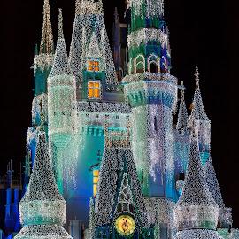 Cinderella's Castle by Drew Selman - Public Holidays Christmas ( walt disney world, magic kingdom, glass, christmas, holidays, orlando, holiday lights )