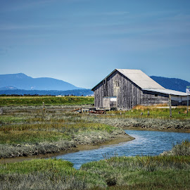 Little Indian Slough  by Todd Reynolds - Buildings & Architecture Decaying & Abandoned