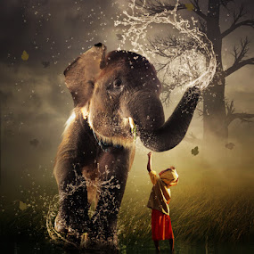 It's Time To Bath Big Brother .. !!!! by Alfa Oldicius - Digital Art Things ( water, child, smoking brush, reflection, water brush, grass, fog, elephant, flood, tree brush, water splash brush, leaves )