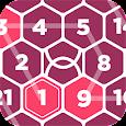 Rikudo - Number Maze