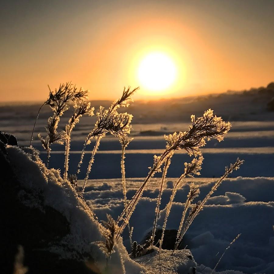 sunrise by Bjarklind Þór - Instagram & Mobile Instagram