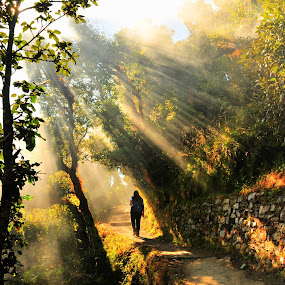 Morning Walker by Prashanth UC - Landscapes Travel ( #GARYFONGDRAMATICLIGHT, #WTFBOBDAVIS )