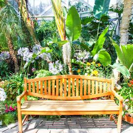 W W Seymour Botanical Gardens at Wright Park by Shari Linger - City,  Street & Park  City Parks ( bavarian landscape gardens, wright park, tacoma, botanical gardens, washington )