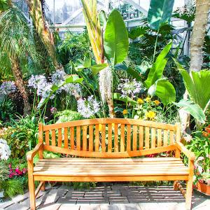 W W Seymour Botanical Gardens Tacoma 3 NWM (1 of 1).jpg