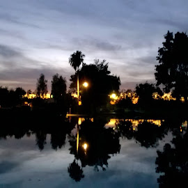 plaza park at night  by Michael Atondo - Instagram & Mobile Other ( visalia, plaza park, nokia lumia, windoiws phone, bishop deville )