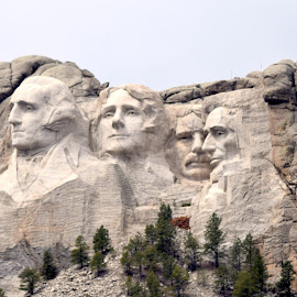 Mount Rushmore by Emil Gunnary - Landscapes Mountains & Hills ( founding fathers, american presidents, america, make america great again, patriotic, mt rushmore, ua, south dakota, nikon d- 5300, nikon, 1776, historic places )