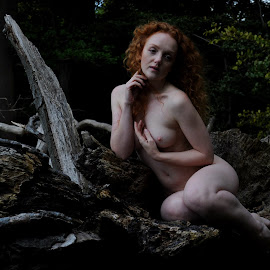 Hamadryad's Throne by DJ Cockburn - Nudes & Boudoir Artistic Nude ( natural light, sitting, nude, nature, woman, forest, redhead, ivory flame, portrait )