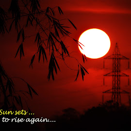 The sun... by Asif Bora - Typography Quotes & Sentences