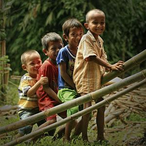 Main Bambu.jpg