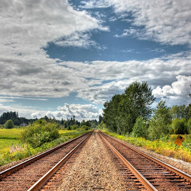 Look Ahead by Ernie Kasper - Landscapes Travel ( clouds, peaceful, wood, canada, grass, railroad, stone, langley, tracks, travel, shrubs, sign, nature, bushes, metal, trees, view, british columbia, fields )