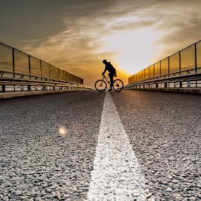Midnight cyclist by Jean Bogdan Dumitru - Transportation Bicycles ( #cycling #midnight #bike )