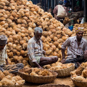 Coconut Men by Shishir Pal Singh - City,  Street & Park  Markets & Shops ( shishir, mysore, street, india, photostory )