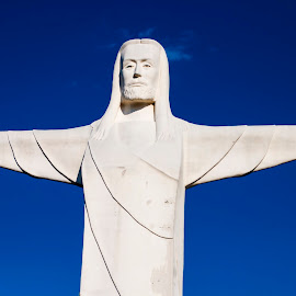 Christ of the Ozarks by Greg Reeves - Buildings & Architecture Statues & Monuments ( great passion play, statues, christ of the ozarks, eureka springs,  )