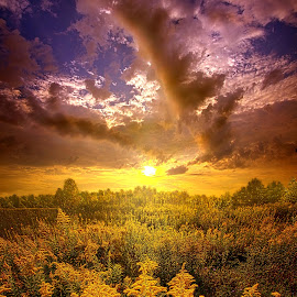 With All Your Heart And Soul by Phil Koch - Landscapes Sunsets & Sunrises ( vertical, wisconsin, yellow, travel, landscape, photography, sun, life, sky, nature, emotions, weather, horizons, light, inspired, office, clouds, heaven, green, colors, art, twilight, mood, journey, horizon, scenic, morning, living, portrait, country, field, environment, dawn, blue, serene, sunset, outdoors, meadow, lines, earth, sunrise, natural )