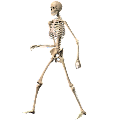 Skeleton Ragdoll, Walking dead APK for Bluestacks