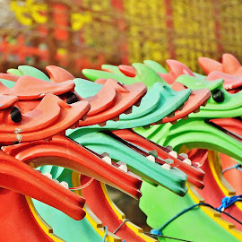Dragon heads  by Eloise Rawling - Abstract Patterns ( park, boats, dragon, lake )
