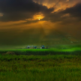 Work and strive by Iqbal Gautama - Digital Art Places ( canon, farmer, sunset, indonesia, landscape photography, landscape )