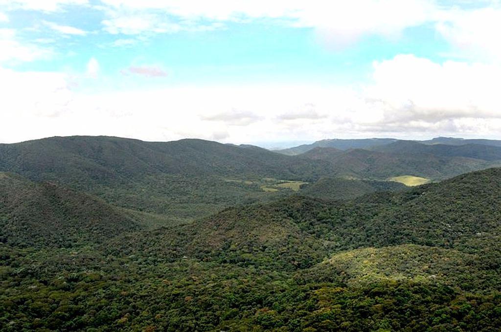 [Área de Preservação na Serra do Japi, Jundiaí/SP (ideal para compensação ambiental)]