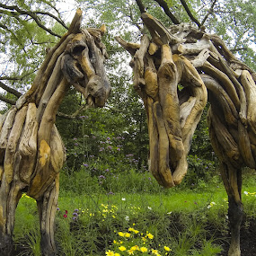 cheval de bois by Antonin de Bertimbrie - Artistic Objects Other Objects ( horses, wood, artwork )