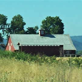 Beautiful Barn by Sarah Farber - Buildings & Architecture Other Exteriors