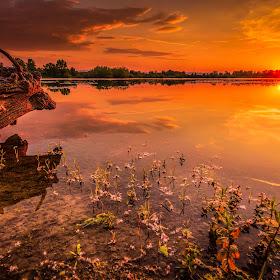 Lake sunset-2.jpg