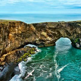 Dyrhólaey by Steve Rogers - Landscapes Caves & Formations ( icelandic, dyrhólaey, iceland, vik, arch, avalon-art, ocean, beach, coastline, black sand, cave, coast )