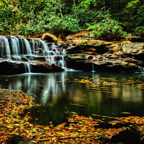 by Kevin Frick - Landscapes Waterscapes ( autumn, west virginia, falls, waterfall, fall, leaves )