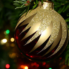 Christmas three by Daniela Murat - Public Holidays Christmas ( macro, pwcholidays, three, christmas, globe )