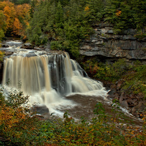 Blackwater Falls by Kevin Frick - Landscapes Waterscapes ( west virginia, blackwater falls, water fall )