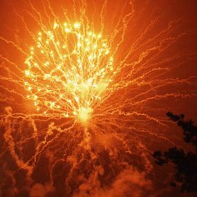 Fourth of July celebration by Benny Lopez - Public Holidays July 4th ( 4th of july, fireworks )