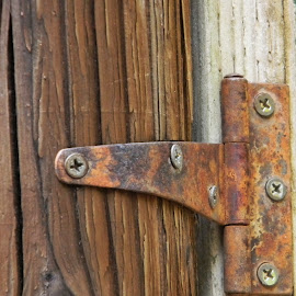 Rusty Hinge by Sarah Farber - Artistic Objects Other Objects