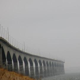 by Sue Law - Buildings & Architecture Bridges & Suspended Structures