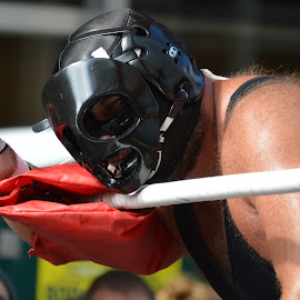 by Thomas Shaw - People Musicians & Entertainers ( bear, ring, wrestling, white, mask, schwanz, raleigh, the works, pro wrestling, otto, gouge pro wrestling, masked, north carolina, wrestler, hairy, gouge, red, trunbuckle, gouge wrestling, otto schwanz, ropes, man, black )