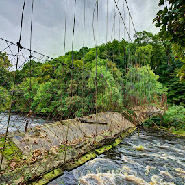 by Stephen Crawford - Buildings & Architecture Bridges & Suspended Structures