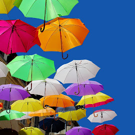 Umbrella fiesta by Gérard CHATENET - City,  Street & Park  Street Scenes