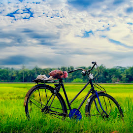 Lonely by Iqbal Gautama - Transportation Bicycles ( clouds, canon, paddy field, indonesia, transportation, landscape, travel photography, bicycle )